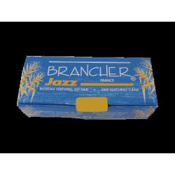 Reed, Saxofón Soprano, Brancher de jazz de la fuerza de 2.5 x6