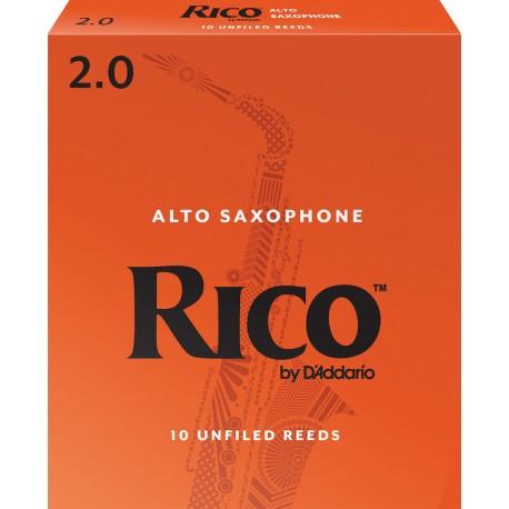 Anche Saxophone Alto Rico orange force 2 x10